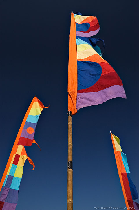 ApolloBay_MusicFest_Flags4