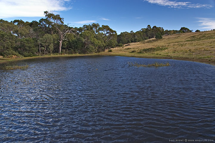 Bellbrae_Lake2