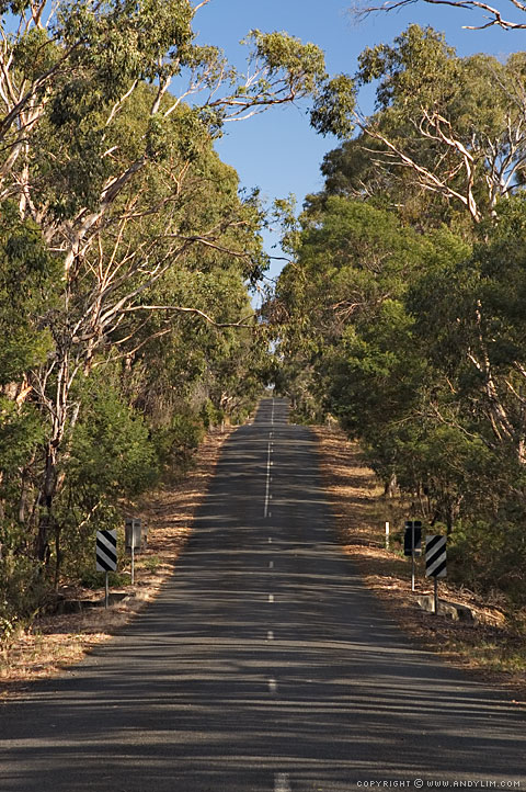 Bellbrae_Road_Ahead7