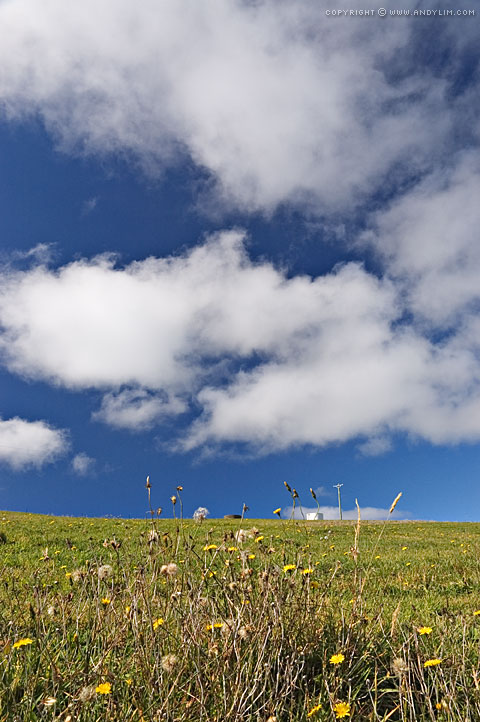 Cloud_over_Meadows2