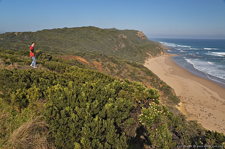 GreatOceanRoad_Lookout