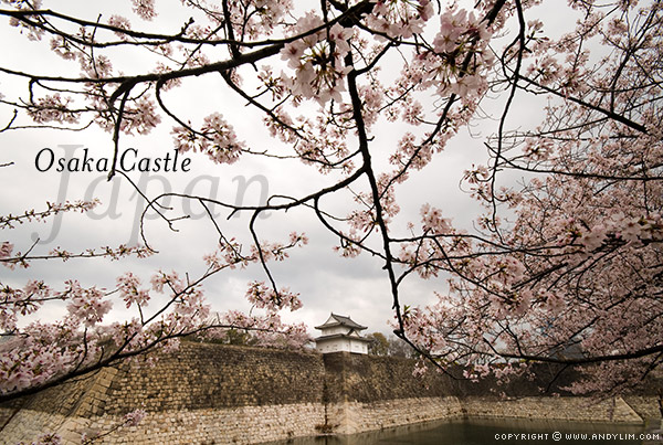 osaka castle6 Composition in Landscape Photography